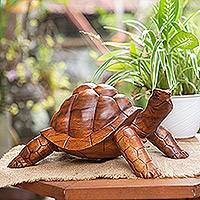 Wood sculpture, 'Mythic Tortoise' - Hand Crafted Wood Turtle Sculpture