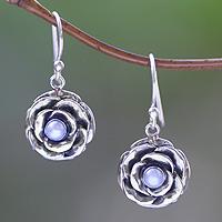 Cultured pearl earrings, 'Glamorous June Rose'