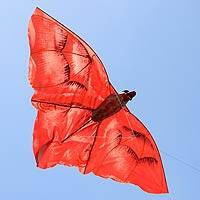 Kite, 'Crimson Bat' - Artisan Crafted Kite