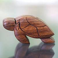 Wood puzzle box, 'Turtle Wisdom' - Hand-carved Suar Wood Puzzle Box