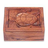 Wood box, 'Balinese Sea Turtle' - Handmade Brown Suar Wood Turtle Theme Decorative Box