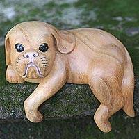 Wood sculpture, 'Curious Shih Tzu' - Hand Made Wood Dog Sculpture Natural Finish from Indonesia