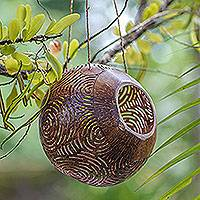 Coconut shell birdhouse, 'Circle Maze' - Hand Made Coconut Shell Birdhouse Circular from Indonesia