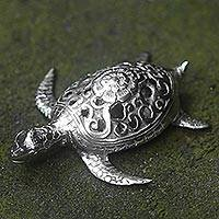 Bronze sculpture, 'Turtle of Wisdom' - Silver Colored Bronze Sculpture of a Turtle from Indonesia