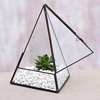 Glass and brass terrarium, 'Pyramid Patio' - Handmade Javanese Glass and Brass Pyramid Plant Terrarium