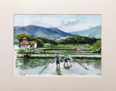 'Rice Field and Mountains' - Watercolor Landscape Painting of a Rice Field from Indonesia