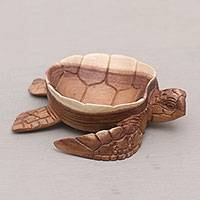 Wood catchall, 'Kura Kura Keeper' - Suar Wood Tortoise Catchall Hand Carved in Bali