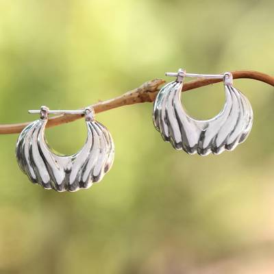 Sterling silver hoop earrings, Daylight Shells