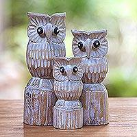Wood statuettes, 'Hooting Trio' (set of 3) - Albesia Wood Owl Statuettes from Bali (Set of 3)