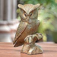 Wood sculpture, 'Owl on a Ledge' - Hibiscus Wood Owl Sculpture from Bali