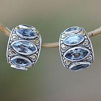 Gold accent blue topaz drop earrings,