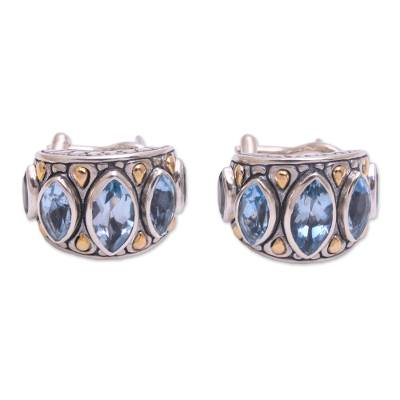 Sterling Silver Gold Accent Blue Topaz Drop Earrings