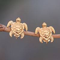 Men's gold plated stud earrings, 'Serangan Turtles' - Men's Gold Plated Sterling Silver Turtle Stud Earrings