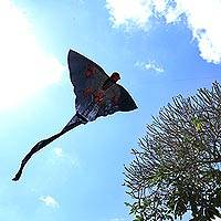 Fabric kite, 'Soaring Monkey' - Hand-Painted Fabric Monkey Kite from Bali