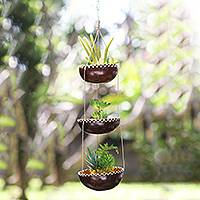 Coconut shell hanging planter, 'Vertical Garden' - Tiered Hanging Coconut Shell Plant Pot