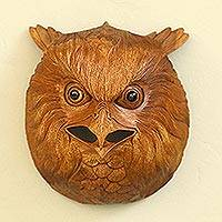 Wood wall sculpture, 'Owl Eyes' - Hand Carved Native Suar Wood Owl Head Wall Decor