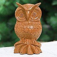 Wood statuette, 'Fabled Owl' - Bird Statuette Hand Carved Wood Sculpture from India