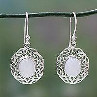 Rainbow moonstone dangle earrings, 'Delhi Dewdrop' - Handcrafted Rainbow Moonstone Earrings with Silver Halos