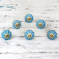 Featured review for Ceramic cabinet knobs, Floral Beauties in Sky Blue (set of 6)