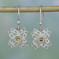 Citrine dangle earrings, 'Jali Charm' - Citrine and Sterling Silver Dangle Earrings from India