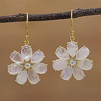 Gold plated rainbow moonstone and aquamarine dangle earrings,