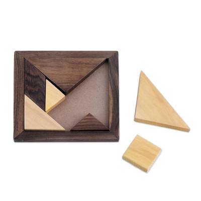 Handcrafted Geometric Wood Puzzle from India
