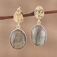 Vermeil labradorite dangle earrings, 'Dazzling Delight' - Handmade Gold Vermeil Labradorite Dangle Earrings from India