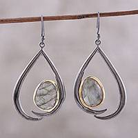 Gold accent labradorite dangle earrings, 'Endear' - Gold Accent Labradorite Dangle Earrings from India