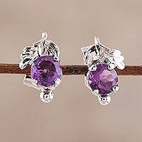 Rhodium plated amethyst stud earrings, 'Nature Leaf' - Leafy Rhodium Plated Amethyst Stud Earrings from India