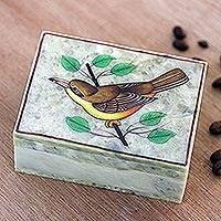 Hand painted decorative soapstone box, 'Lost and Found' - Hand Painted Decorative Soapstone Bird Box