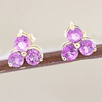 Gold-plated amethyst stud earrings, 'Regal Trio' - Gold-Accented Sterling Silver Amethyst Stud Earrings