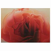 'Essential Wonder' (2013) - Rose Flower Painting Signed Fine Art