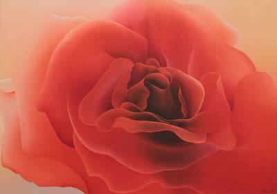 'Orange Rose' (2013) - Flower Painting Signed Fine Art