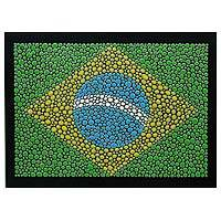 Wood wall art, 'Brazilian Pride' - Brazilian Flag on Artisan Crafted Signed Wall Art Panel