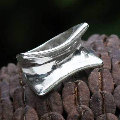 Sterling Silver Ring from Modern Brazilian Jewelry