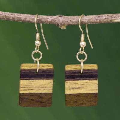 Wood dangle earrings, 'Forest Hues' - Brown Striped Wood Dangle Earrings from Brazil