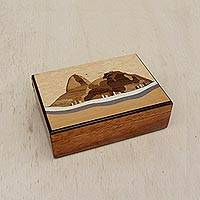 Wood decorative box, 'Sugarloaf' - Handcrafted Wood Decorative Box from Brazil