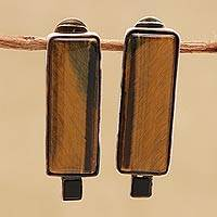 Tiger's eye and agate drop earrings, 'Earthen Bar' - Tiger's Eye and Agate Drop Earrings from Brazil