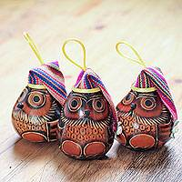 Dried mate gourd ornaments, 'Holiday Owls' (set of 3) - Dried Mate Gourd Owls Ornaments Wearing Hats (Set of 3)