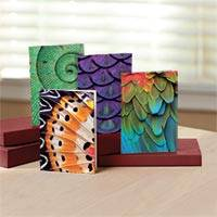 UNICEF everyday cards, 'Nature's Textures' (set of 12) - Nature's Textures UNICEF Everyday Cards (set of 12)