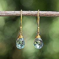 Gold vermeil blue topaz dangle earrings, 'Sublime Elegance' - Hand Crafted Gold Vermeil and Blue Topaz Earrings