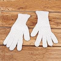 Cashmere gloves, 'Trendy Ivory' - Knit Cashmere Gloves in Ivory from India