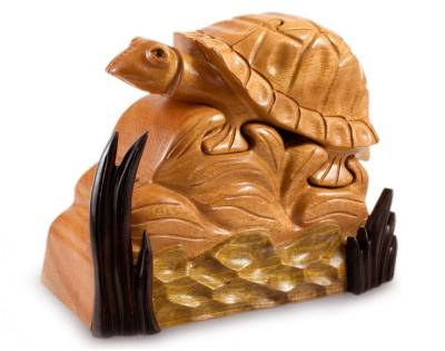 Mahogany puzzle box, 'Monterrico Turtle' - Artisan Crafted Wood Turtle Decorative Box