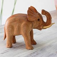 Mahogany puzzle box, 'Elephant Secret' - Hand Carved Mahogany Elephant Puzzle Box
