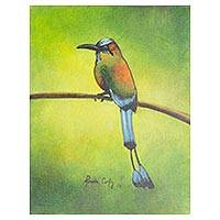 'Torogoz' - El Salvador Signed Original Bird Painting