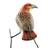 Ceramic figurine, 'Red-Tailed Hawk' - Guatemalan Handmade Red-Tailed Hawk Ceramic Bird Figurine (image 2d) thumbail