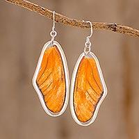 Butterfly wing dangle earrings, 'Orange Julia' (Costa Rica)