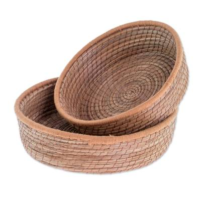 Handmade Pine Needle and Cotton Baskets in Sepia (Pair)