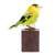 Art glass sculpture, 'Wilson's Warbler' - Art Glass Sculpture of a Wilson's Warbler from El Salvador (image 2a) thumbail