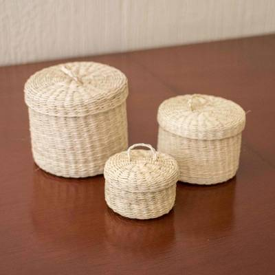 Small natural fiber lidded baskets, 'Nest' (set of 3) - Handmade Natural Fiber Baskets (Set of 3)